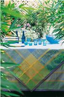 sari muscaris blue