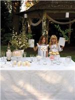 Siena white tablecloth le jacquard francais